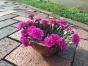 Copper vase for fresh flowers
